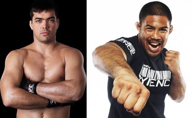 Michael Bisping injured and out for the year, Mark Munoz